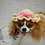 Thumbnail: Pet Sun Hat Beanie (XS-XL) Any Colors