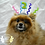 Thumbnail: Pet Birthday Hat (XS-XL)