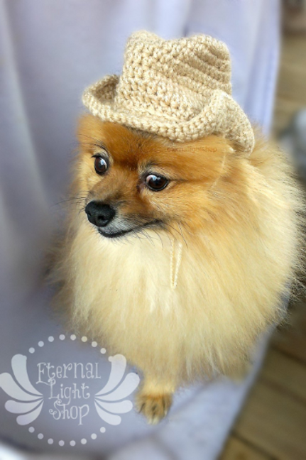 Cowboy Pet Hat (XS-XL)