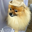 Thumbnail: Cowboy Pet Hat (XS-XL)