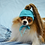 Thumbnail: ANY Sizes/Colors Pet Pony Tail Hat Beanie (XS-XL) Messy Bun