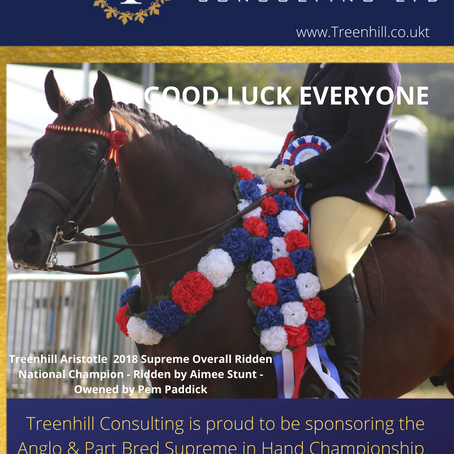 Treenhill Consulting LTD supporting the 2021 Arab Horse British National Championships