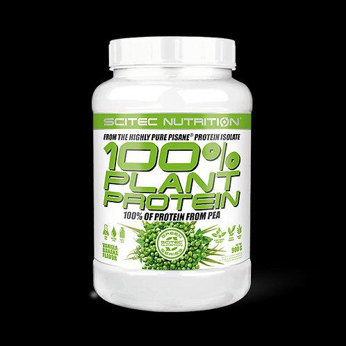 100% Plante protéines 900g - Scitec Nutrition