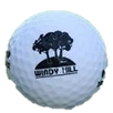 Windy Hill Golf Ball - Conneaut, OH