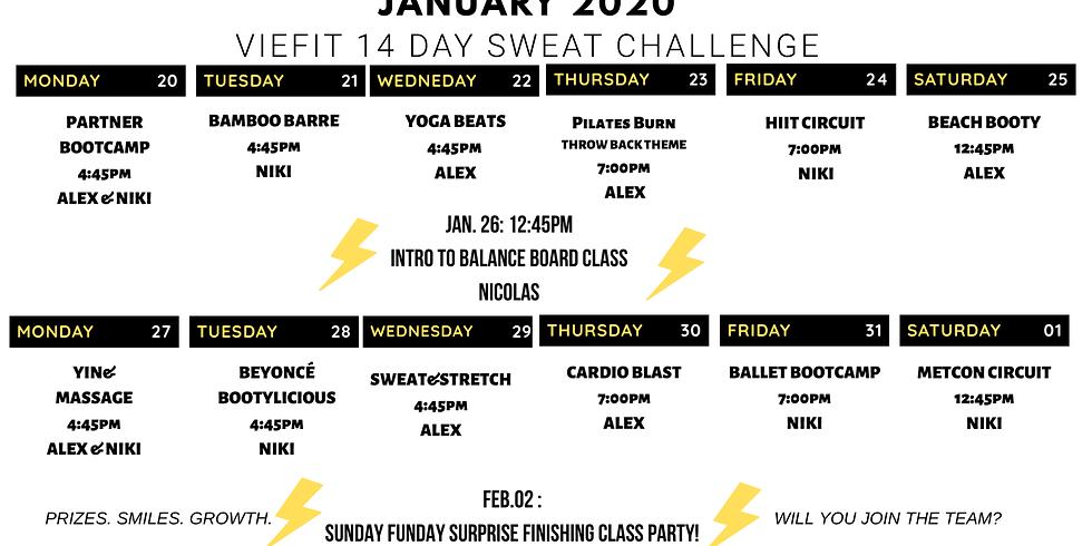 JANUARY 2020 VIEFIT 14 DAY CHALLENGE!