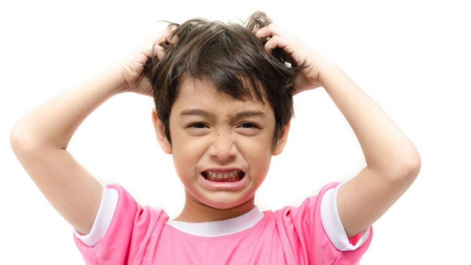 imagenes de pediculosis para niños
