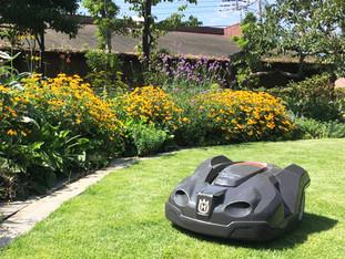 DG Lab Hausに『「雨ニモマケズ」働くロボット芝刈機はただいま実証実験』を寄稿しました