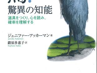 【藤木BLOG】『鳥!驚異の知能』あの有名な言葉はダーウィンではなかった?