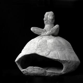 Figure sur la tortue-grande