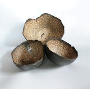 Cécile Lisbonis - Sculpteure