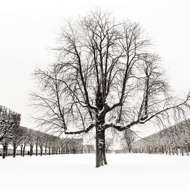 Eric Lenglemetz - Photographe