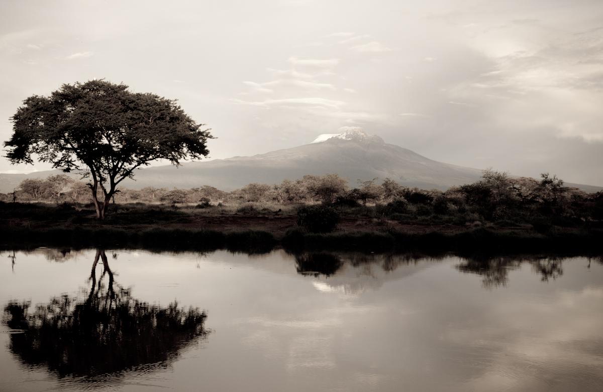 Mawenzi reflections