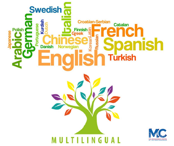 Power of Multilingualism