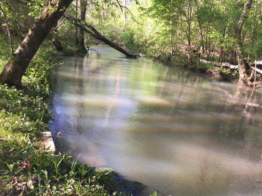 HS creek
