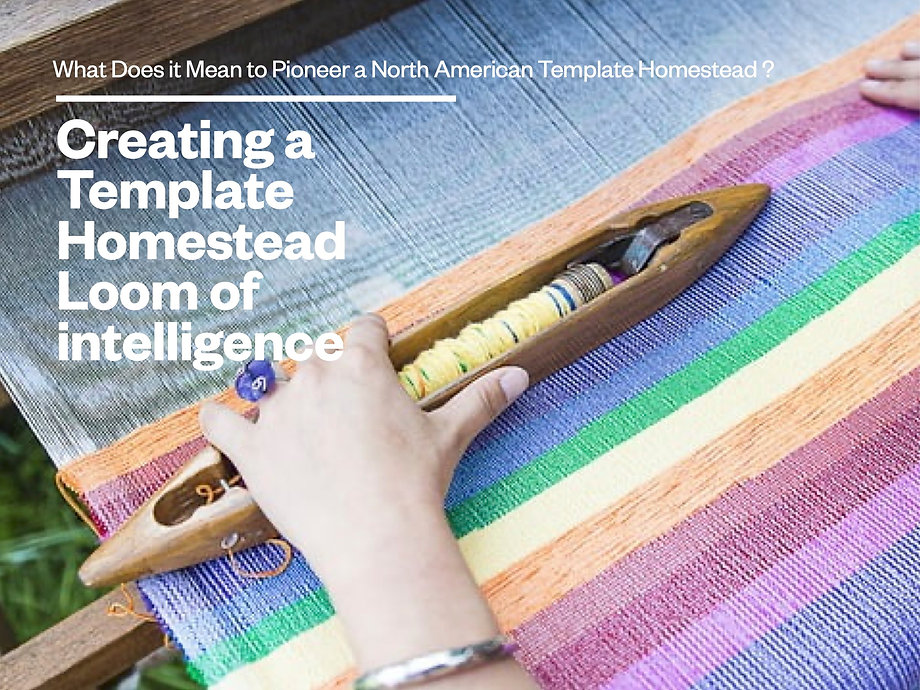 Creating a THS Loom of Intelligence.jpg