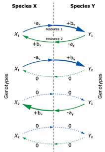The evolution of mutualism from reciprocal parasitism: more ecological clothes for the Prisoner's Dilemma