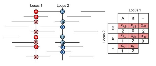 Estimation of linkage disequilibrium from high-throughput pooled resequencing data