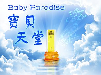 宝贝天堂Baby Paradise