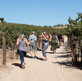 Wineday-167.jpg
