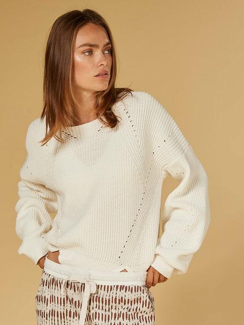 Sweater Cotton Knit