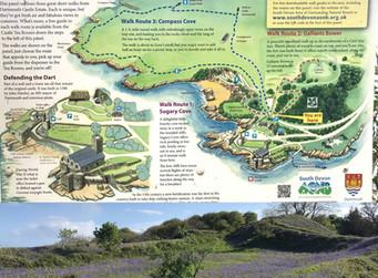 Gallants Bower - Bluebell Heaven
