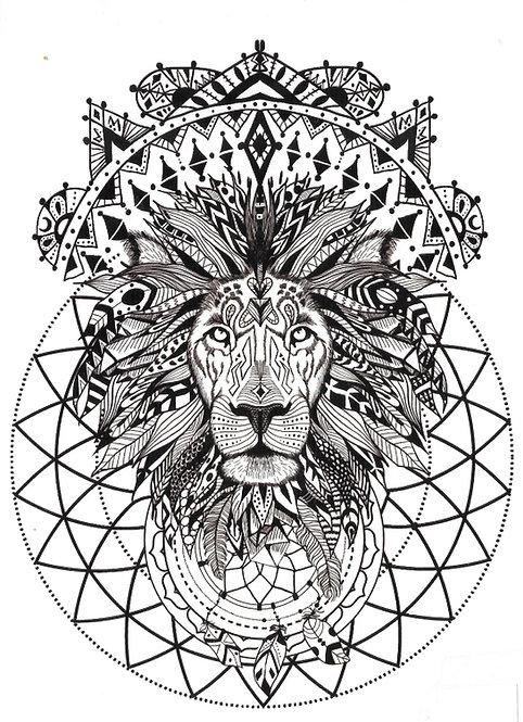 Plum'Lion