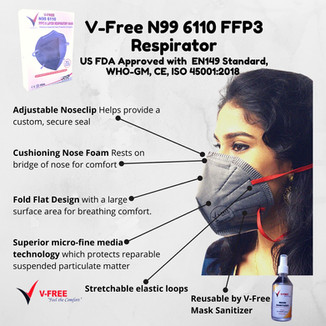 Vfree N99 Mask.jpeg