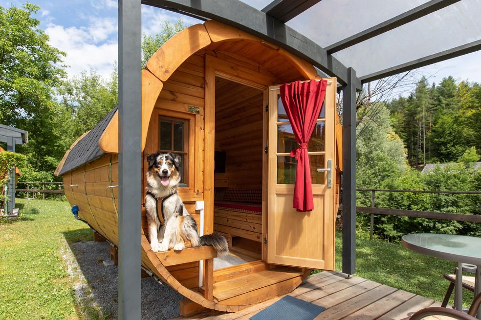 campingvillage_woerthersee-140_k.jpg