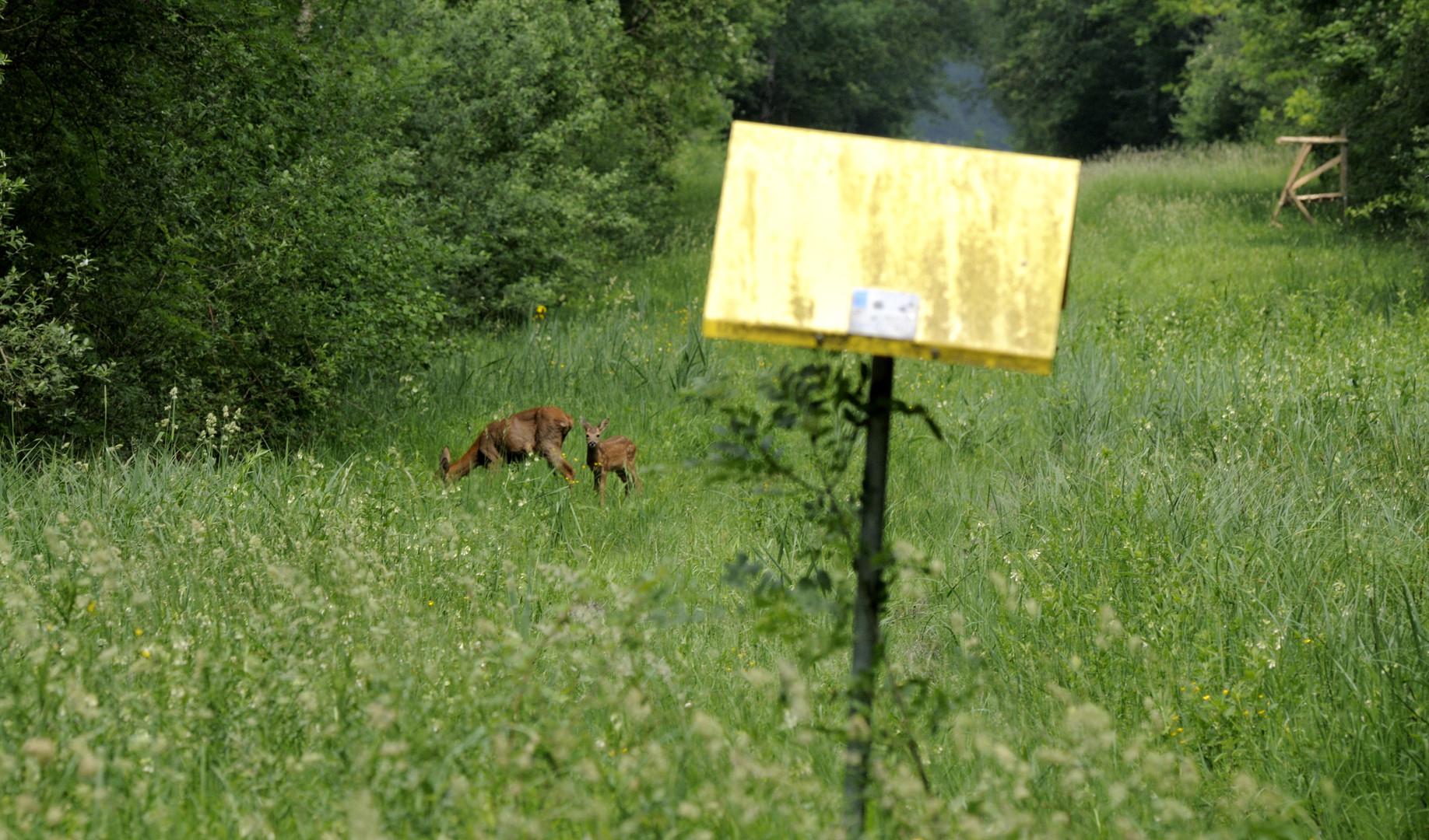 Servitude gazière (La Bassée)