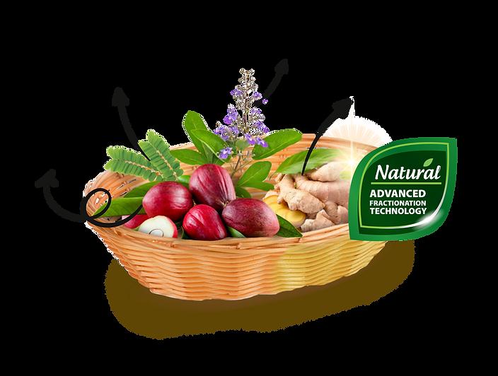 4 ingredients Herbakof-06.png