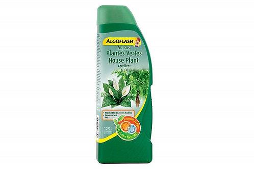 Algoflash engrais pour plantes vertes