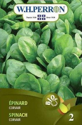 Semences Épinard W.H.Perron