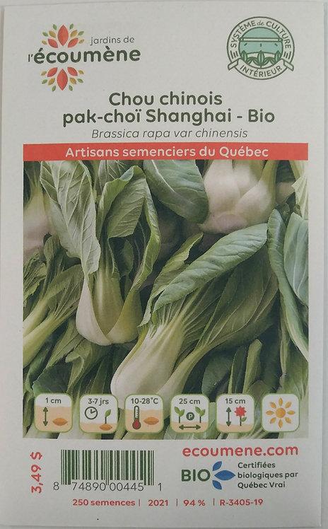 Semences Chou Chinois Écoumène