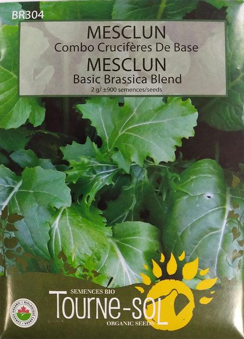 Semences Mesclun Tourne-Sol