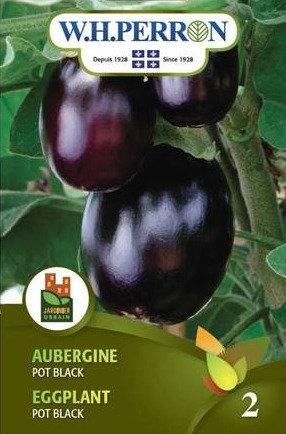 Semence Aubergine W.H.Perron