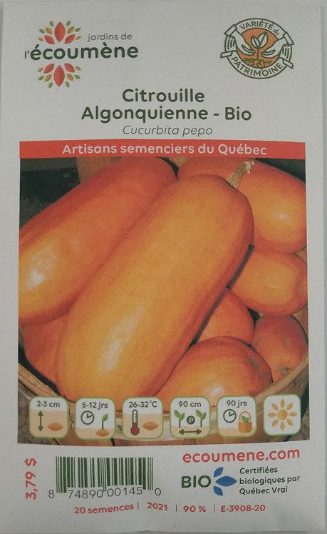 Semences Citrouille Écoumène