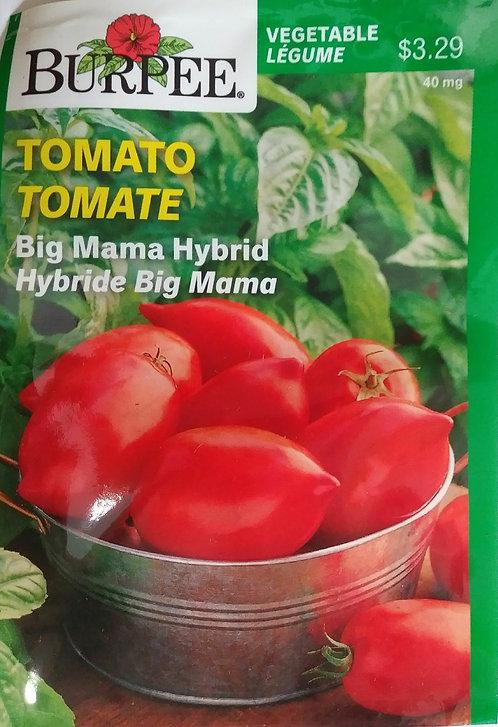 Semences Tomate Burpee