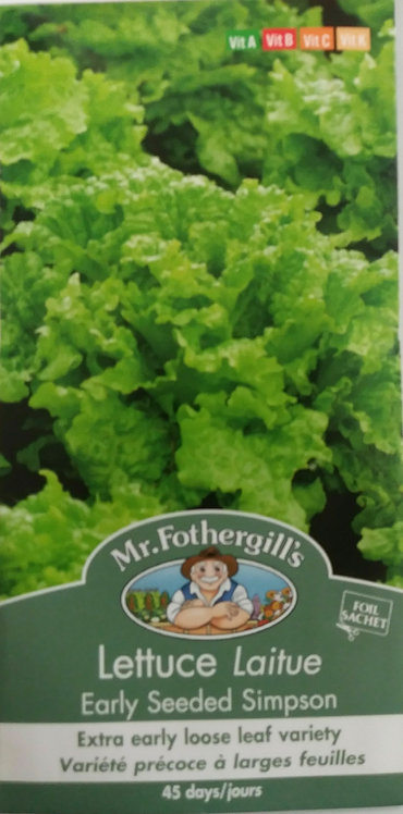 Semences Laitue Mr. Forthergill's