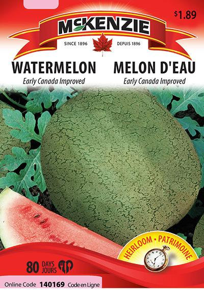 Semences Melon Mckenzie