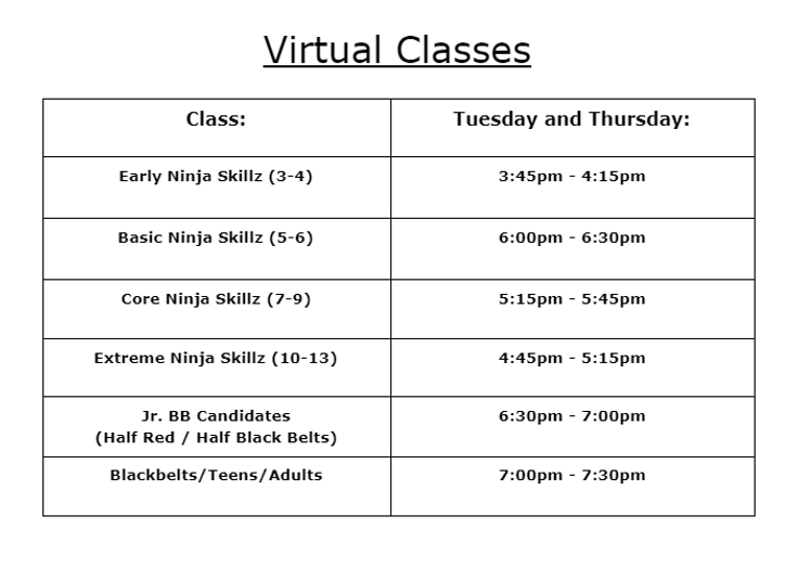 NEW 2021 Class Schedule Virtual.PNG