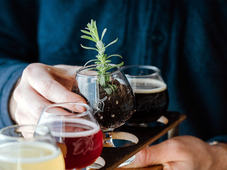 Sustainability part 1: Can't beer the thought of climate change?