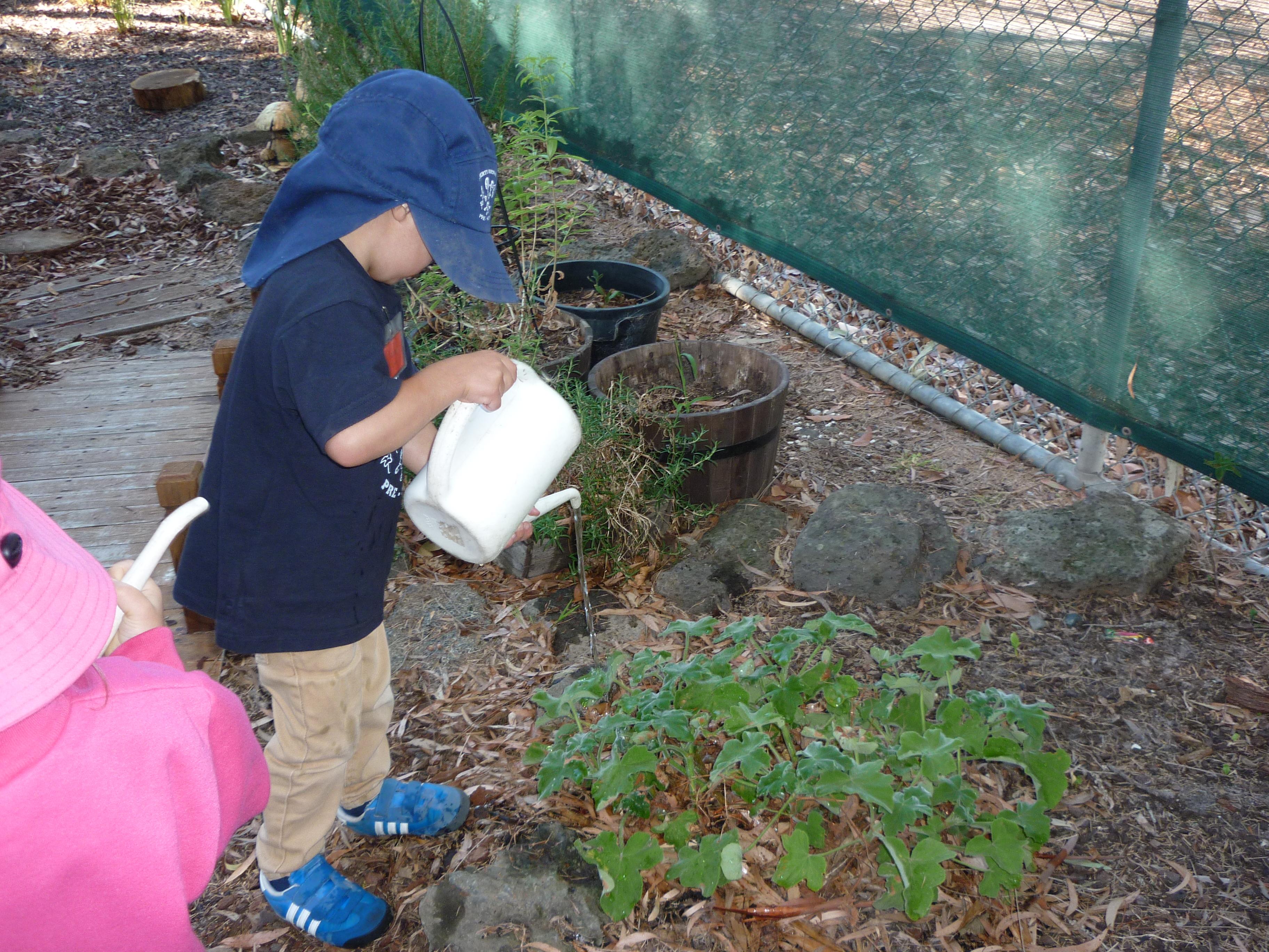 Watering the sensory garden