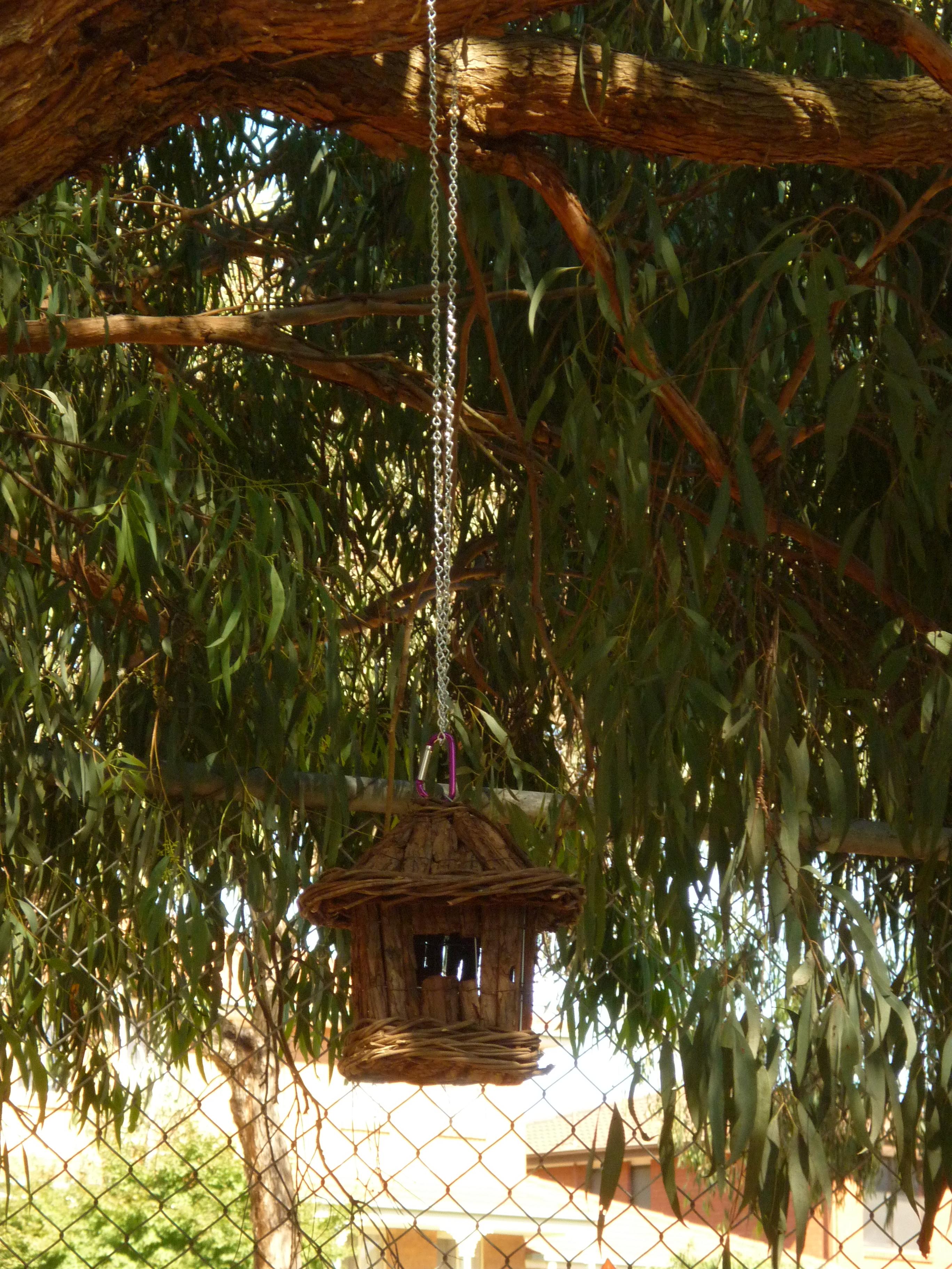 Our bird house