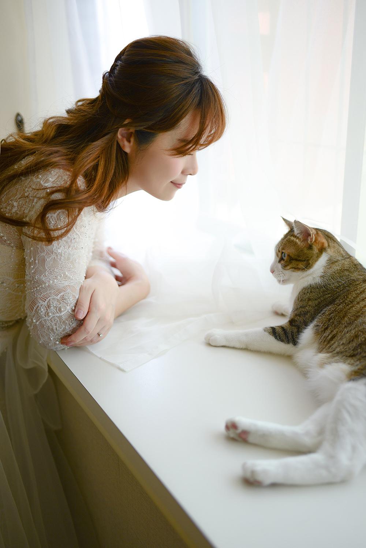 琪琪小姐 x 為流浪貓咪盡一份心力