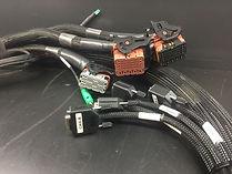 prototype harness