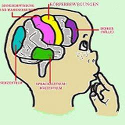 EEG-Neurofeedback Praxis: ab dem 27 April 2020 wieder offen für die Patienten!
