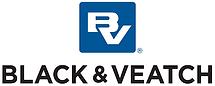 Black & Vetec.png