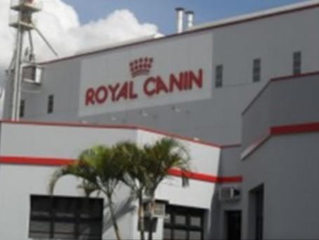 Projeto Fábrica Royal Canin