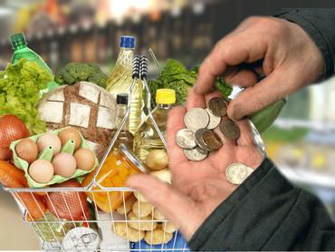 Учёные представили в госдуму расчёт потребительской корзины в размере 31тыс ₽
