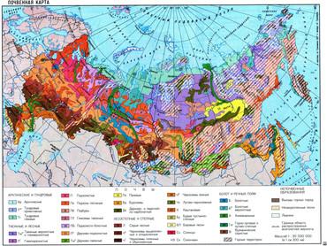 92% российских земель в собственности государства, 6,5% - граждан, 1,3% - организаций
